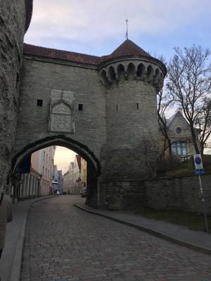 Tallinn 4 dagar 6 juni